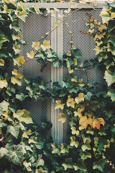 puertas-de-exterior-metalicas-para-el-hogar